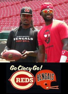 Cincinnati Reds & Bengals