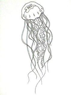 Jellyfish by Noireaude. Lion's Mane Jellyfish, Jellyfish Tank, Jellyfish Drawing, Jellyfish Painting, Jellyfish Aquarium, Jellyfish Tattoo, Jellyfish Quotes, Watercolor Jellyfish, Tatoo