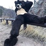 Smokey the bear boutta get this dick 😔👊 Suit belongs to TyTyCub on twitter #furry #fur #furries #fursuit #furryfandom