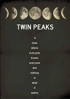 Twin Peaks: Just started this on Netflix and really liking it so far! It took a bit of getting use to at first seeing all the early 90s dress and hairstyles, but the storyline is creepy cool.