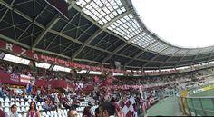 31/05/15 Torino-Cesena 5-0 ultima di campionato