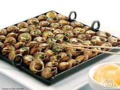 Lleida Snails (Lleida Pyrenees-Spain)
