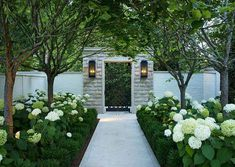 This Southern garden can be enjoyed no matter the season. This Southern garden can be enjoyed no matter the season. Hydrangea Landscaping, Front Yard Landscaping, Backyard Landscaping, Landscaping Ideas, Southern Landscaping, Boxwood Landscaping, Landscaping Software, Back Gardens, Outdoor Gardens