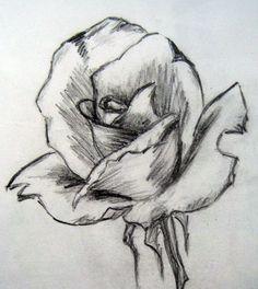 sketching | Rose Sketches Drawings