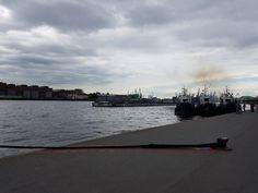 Санкт-Петербург, июль 2017, фото - Елена Веселова