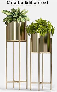 House Plants Decor, Plant Decor, Gold Bedroom Decor, Living Room Decor, Metal Plant Stand, Decorative Planters, 3d Models, Home Decor Accessories, Indoor Plants