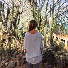 """19 mentions J'aime, 1 commentaires - MW (@la_louve_parisienne) sur Instagram: """"🌵 Très belle promenade 🌵dans les #serresdauteuil #cactuslover #paris #autumn #cactus #sun #girl…"""""""