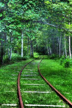 Forest Rails, Hokkaido, Japan. Reminds me of a hayao miyazaki landscape.