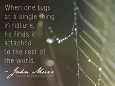 When one tugs at a single thing in nature, he finds it attached to the rest of t.- When one tugs at a single thing in nature, he finds it attached to the rest of the world. - John Muir (Find more green quotes on SustainableBabySt. Aldo Leopold Quotes, River Quotes, Steps Quotes, Environment Quotes, Conservative Quotes, Las Vegas, Action Quotes, John Muir Quotes, Green Quotes
