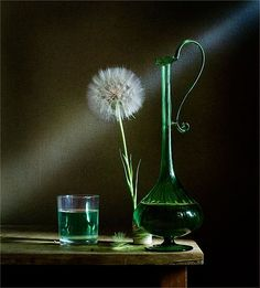 18 Trendy Ideas Photography Still Life Flowers Nature Still Life 2, Still Life Drawing, Still Life Photos, Painting Still Life, Glass Photography, Dark Photography, Still Life Photography, Photography Flowers, Still Life Flowers