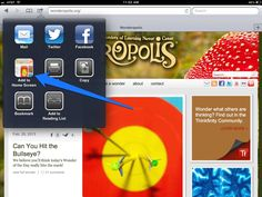 """ANY website can easily be made into an app icon on your iPad. Quick way to """"bookmark"""" websites for young kids!"""