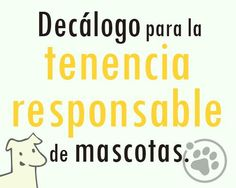 Facebook, Pets, Planners, Tips, Friends, Animales