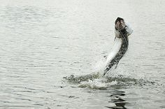 How to catch tarpon in San Juan, Puerto Rico. #fishing