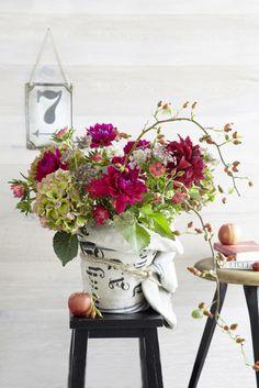 These look like farmers market flowers