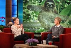 Kristen Bell Trends on Twitter Because of Sloth Love