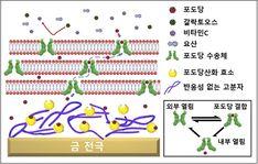 methyl group | Science | Pinterest | Methyl group