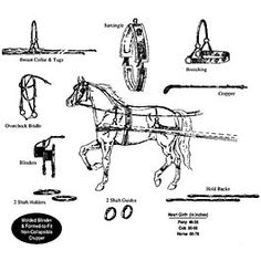 diagram of single horse breast collar harness