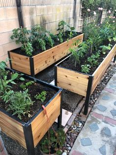 Gardener's Supply designed this cedar raised garden planter box generously deep so you can grow big plants like tomatoes and root crops like carrots. Raised Garden Planters, Raised Planter Boxes, Cedar Planter Box, Garden Planter Boxes, Raised Herb Garden, Cedar Raised Garden Beds, Planter Box Plans, Fall Planters, Elevated Planter Box