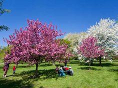 More travel ideas:11 Spring Break Hot Spots—And Their Best AlternativesThe Coolest Beer Gardens Arou... - RENAULT/Philippe Hemis/Corbis