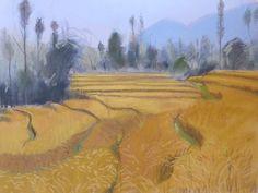 Rice Terraces . Kashmir. Pastel    Felicity House  felicityhouse.eu