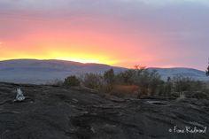 Sunset Maasi Mara