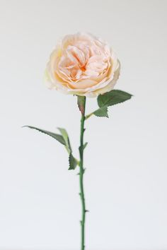 Get the look for your #diy wedding with affordable artificial blush roses from Afloral.com. Create a wedding bouquet, simple fake flower arrangement, and more with reusable flowers.