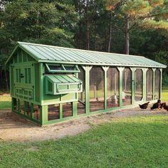 Chicken Coop Run, Backyard Chicken Coops, Building A Chicken Coop, Backyard Farming, Chickens Backyard, Building Building, Cute Chickens, Raising Chickens, Urban Chickens