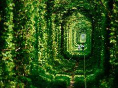 Tunnel of Love, Ukraine  http://www.boredpanda.com/train-love-tunnel-ukraine/