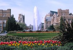 University of Washington campus in Seattle, WA ~ a lovely place
