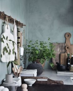 Ideas Design Studio Apartment Plants For 2019 Cottage Kitchens, Home Kitchens, Interior Design Kitchen, Kitchen Decor, Kitchen Ideas, Interior Styling, Interior Decorating, Apartment Plants, Décor Antique