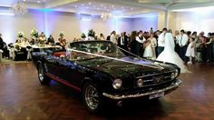 Mustangs in Black 1966 GT Convertible Ford Mustang out for Alim and Lindita's wedding at Manor on High Receptions in Melbourne.