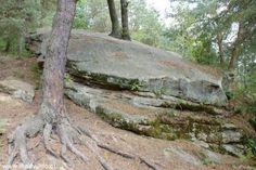 """Pomniki przyrody tzw. """"Skały w Rudzie""""."""