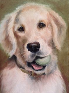 Pet portrait oil painting of your pet 5 x 7 oil by KarenLibecap, $100.00