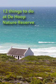 12 things to do at De Hoop Nature Reserve - Roxanne Reid Tourism In South Africa, Sa Tourism, Cape Town South Africa, Africa Travel, Places To Travel, Places To Go, African Holidays, All About Africa, Slow Travel