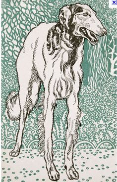 Lino dog