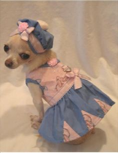 Tiny Dancer Dog Harness Dress Set 3 Piece Set includes Dress, Hat and Leash