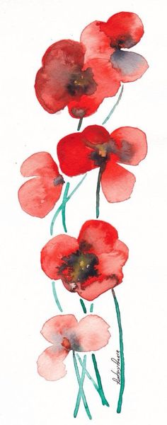 Poppies - Lindsay Pearce So appropriate - I was born on Poppy Day, Remembrance Day and my surname then was Pearce Watercolor Cards, Watercolor Illustration, Watercolour Painting, Watercolor Flowers, Painting & Drawing, Watercolours, Remembrance Day Art, Arte Floral, Elementary Art