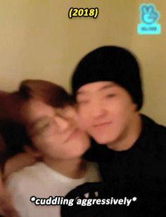 Lobe this relationship of the hyung and his lill cute pumpkin dongsaeng :'( 💕 Wonwoo, Seungkwan, Woozi, Jeonghan, Seventeen Memes, Hoshi Seventeen, 17 Kpop, Got7, Seventeen Wallpapers