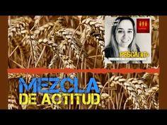 Mezcla de Actitud Small Fish, Reflection, Baseball Cards, Christian Living, Spirituality, Bible Studies, Creative Senior Pictures, Attitude, Christians