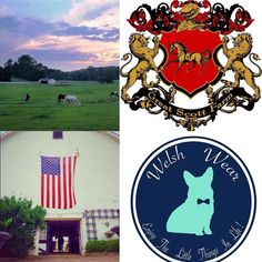We are thrilled to have Great Scott Farm owned by Lindsay and Connor Langan as a part of #TeamWelshWear ! Great Scott Farm is located in Malvern PA and has a second facility in Ocala Florida ! #TeamWelshWear #TeamWelshWearRider #OcalaFL #GreatScottFarm #Equestrian #corgi #preppy #corgination