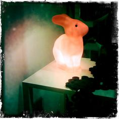 Pink Bunny by Kyoto Song, via Flickr