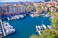 Love Monte - Carlo - Opportunity Social Network