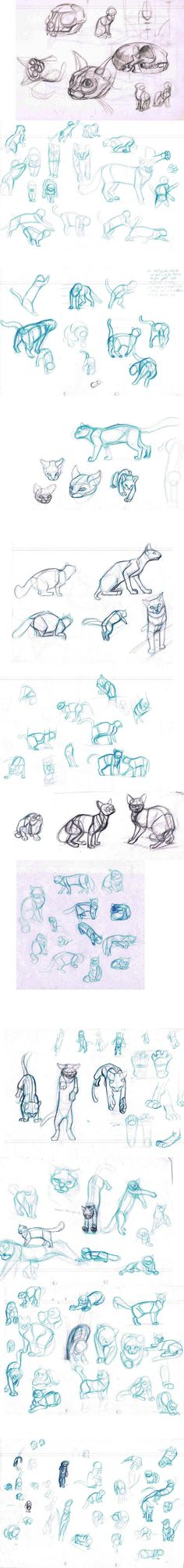 cat sketches by sofmer.deviantart.com on @deviantART