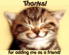 Image result for thanks for adding me comments