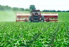 La rotación de cultivos y la ampliación de áreas de implantación de cereales fueron impulso para que durante el año pasado se incremente el uso de insumos para mejorar la calidad de los cultivos. El Ministerio de Agroindustria, a cargo de Ricardo Bur