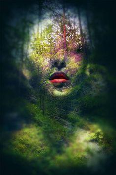 "Saatchi Art Artist Federico Bebber; Photography, ""Atropine"" #art"