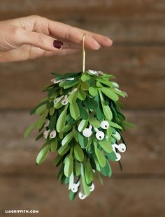 Nothing says winter romance like mistletoe! Add a holiday touch to your DIY wedding by hanging these Winter Wedding Mistletoe Kissing Balls at your reception or using them as part of a centerpiece.
