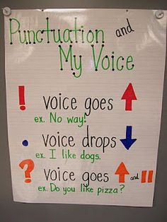 Plethora of awesome anchor charts. These are on my list of things I want to use more of next year!