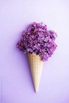 Lilac ice cream flowers.