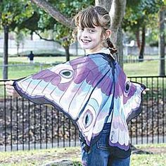 Fanciful Fabric Wings - Butterfly, Chinaberry.com